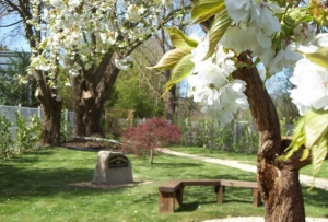 Lydney In Bloom, Garden of Reflection