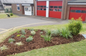 Lydney In Bloom Fire Station bed